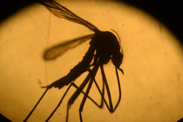 Two Cases of Zika Virus found in North Dakota